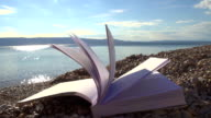 HD SUPER SLOW MO: Book On The Beach