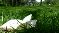 Book's pages turning in the park