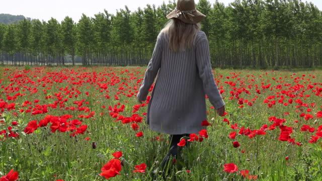 Boom overhead as woman walks into field of poppies