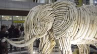 Botswanas president Ian Khama has unveiled a life size statue of an elephant entirely made of ivory tusks to remind peeople that one live elephant is...
