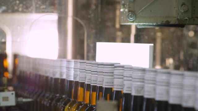 MS Bottles moving in front of inspection light in bottling plant / Sanlucar de Barrameda, Andalusia, Spain