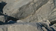 Boulders from a rock slide