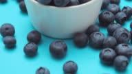 CU TU Bowl of blueberries / London, UK