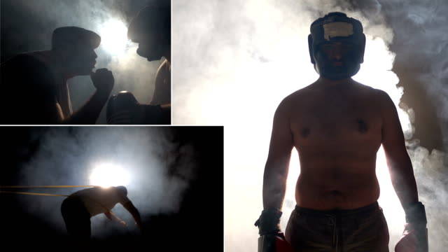 Boxer-Collage
