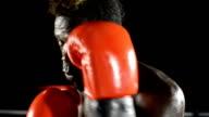 Boxer di viso e il corpo in posizione difensiva