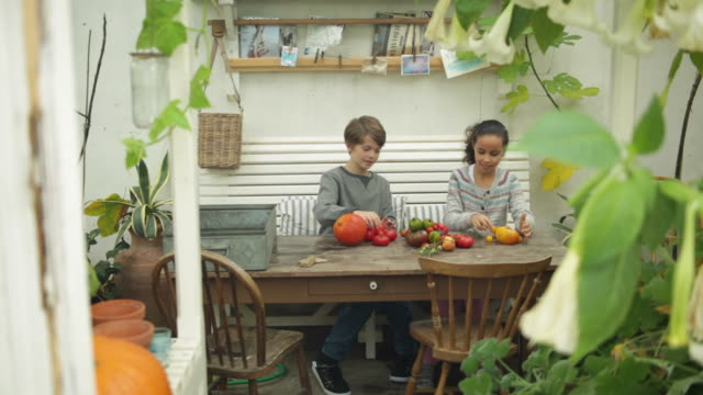 Boy and girl playing with tomatoes inside garden house