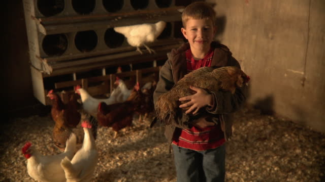 MS Boy (10-11) holding chicken and smiling / Wilmington, Illinois, USA