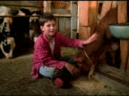 Boy in red checked shirt sits cross legged beside feeding calf in barn, Vermont