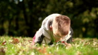 Boy playing with magnifying glass outdoors
