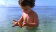 CU, Boy (2-3) playing with starfish in sea, Vieques, Puerto Rico