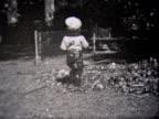 1933 boy rakes leaves. fills wheel barrow