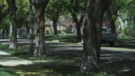 PAN, MS, boy riding his bike down a tree lined suburban street