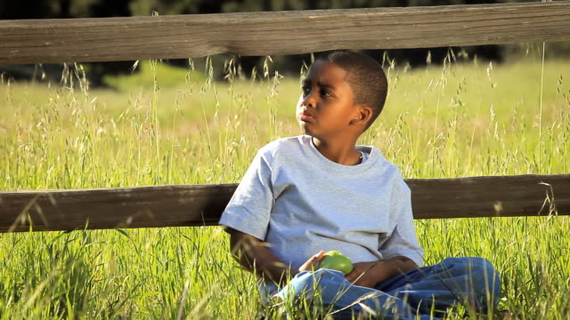 MS Boy (8-9) sitting at fence on grassy field and eating apple / Los Angeles, California, USA