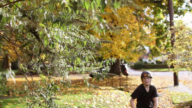 Boy skateboarding and pulling leaf from tree