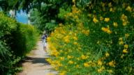 boy sneezing from pollen of flowering plants