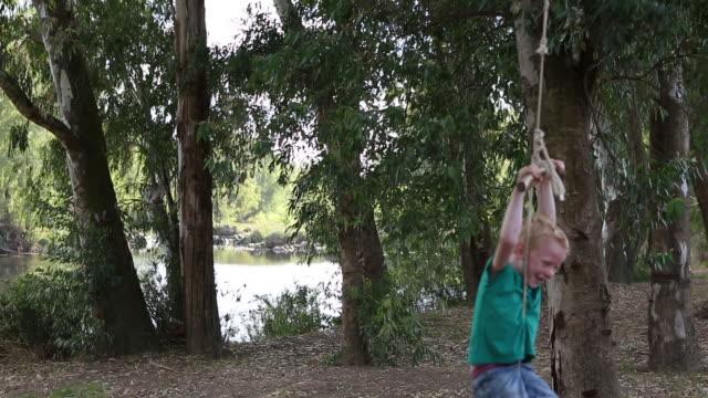 Boy swinging on tree swing