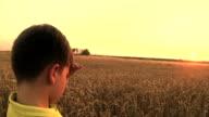 boy watching sunset