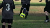 Boys ages 6 to 8 playing in a youth soccer league game. - Slow Motion