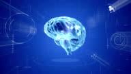 Animazione del cervello. Medical sfondo video