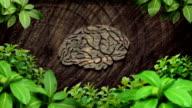 brain forest