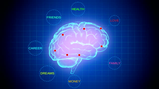Brain Mapping-Important things in life-Loopable