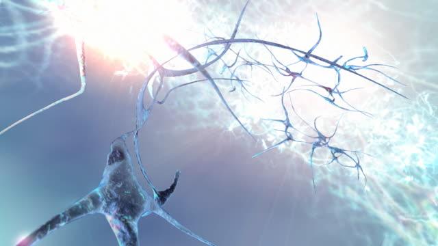 Brain Neural Network long shot natural