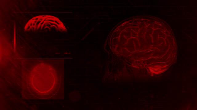 brain scanning 4k