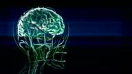 brain visualization concept