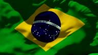 Brazil Flag and International Soccer Ball