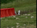 Brecon Beacons EXT GVs DEFRA Officials constructing screen behind which sheep will be slaughtered LMS DEFRA Official standing in vat of disinfectant...