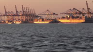 MS Bremerhaven Container Terminal at sunset / Bremerhaven, Bremen, Germany