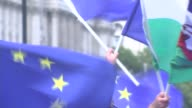 MPs to vote on EU Withdrawal Bill ENGLAND London Westminster EXT AntiBrexit protester wearing mask with the EU flag on it Protesters with EU flag...