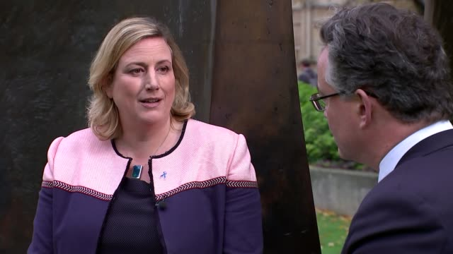 Remainer Tory MPs accused of being 'mutineers' ENGLAND London Westminster EXT Antoinette Sandbach MP interview SOT