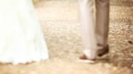 Bride and groom walking in park, kissing.