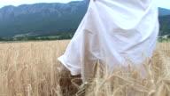 HD: Bride In A Field Of Wheat