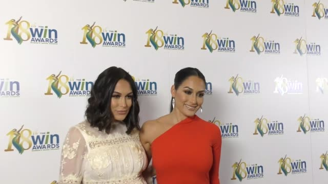 Brie Bella and Nikki Bella at The 18th Annual Women's Image Awards at Skirball Cultural Center on February 17 2017 in Los Angeles California