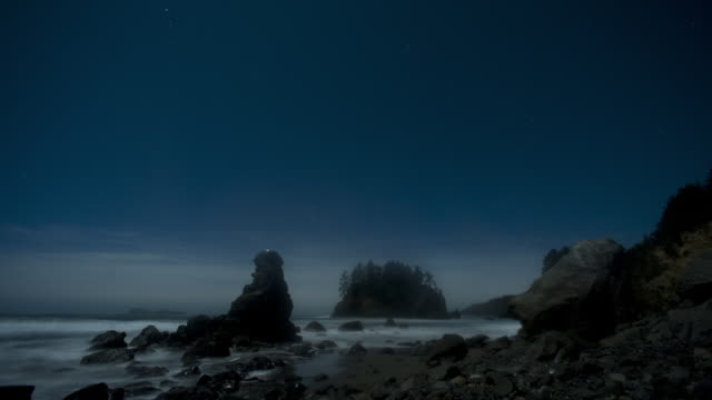 Bright moonlight illuminates California's scenic Trinidad Beach at night.