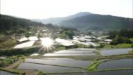 Bright sunlight shines across village homes on the edges of the Sakaori Rice Terrace paddies.