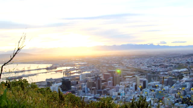 WS Bright sunrise over Cape Town CBD with yellow flowers in foreground, Cape Town, South Africa