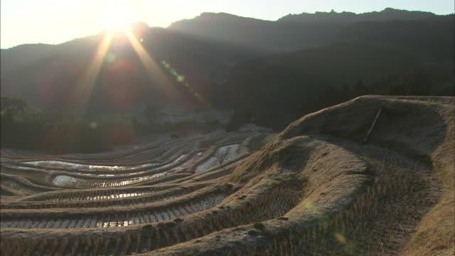 A brilliant sun casts golden beams across the Oyama Senmaida Rice Terraces in Japan.