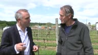 British wine industry benefits from climate change ENGLAND Sussex Uckfield EXT Vineyard PULL OUT Vines Kevin Sutherland interview SOT quadrupled our...