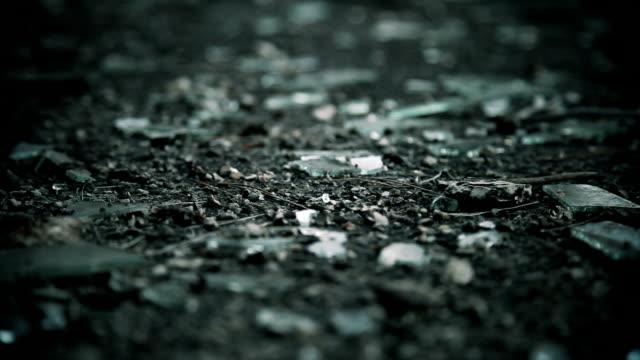 DOLLY: Broken glass