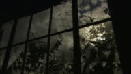 Broken windows frame swaying branches and a cloudy night sky.