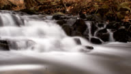 Brook, water blurred timelapse