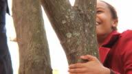 CU TU PAN Brother (8-9) and sister (12-13) climbing tree / Montclair, New Jersey, USA