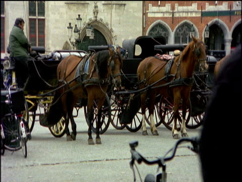 Bruges city centre square including stationary traditional horse and carts the view across Market Square including people riding across square on bicycles