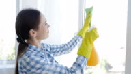 Brunette cleaning with mop and splash window