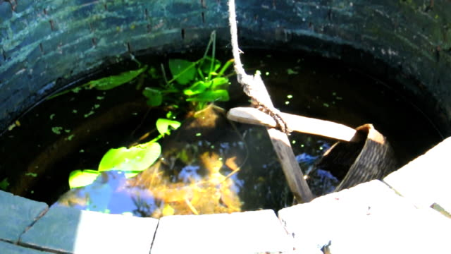 bucket Sprung ins Wasser gut