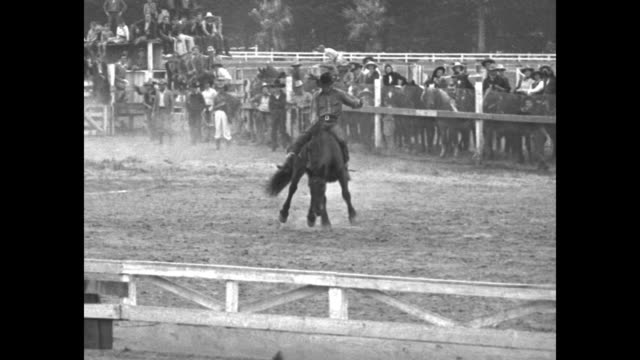 Bucking bronco and rider burst out of gate into arena cowboys standing around fence and on top of structure rider thrown off / bronco and rider in...