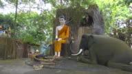 Buddha statue preach to the animals
